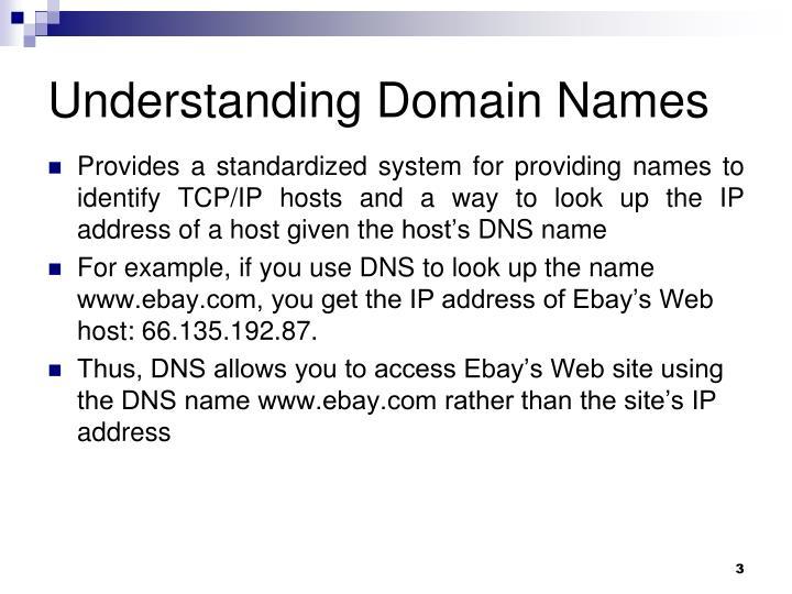 Understanding Domain Names