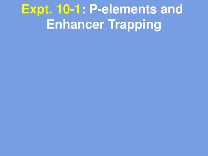 Expt. 10-1