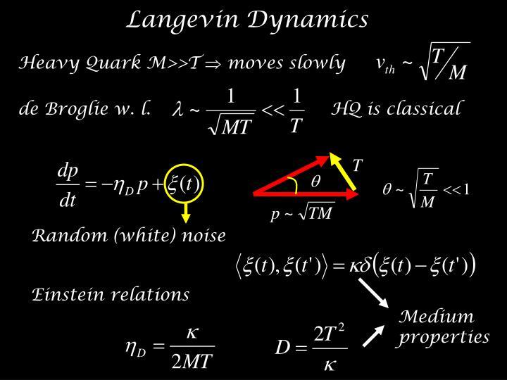 Langevin Dynamics