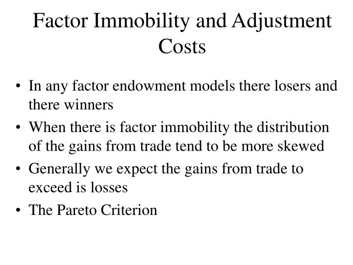 Factor Immobility and Adjustment Costs