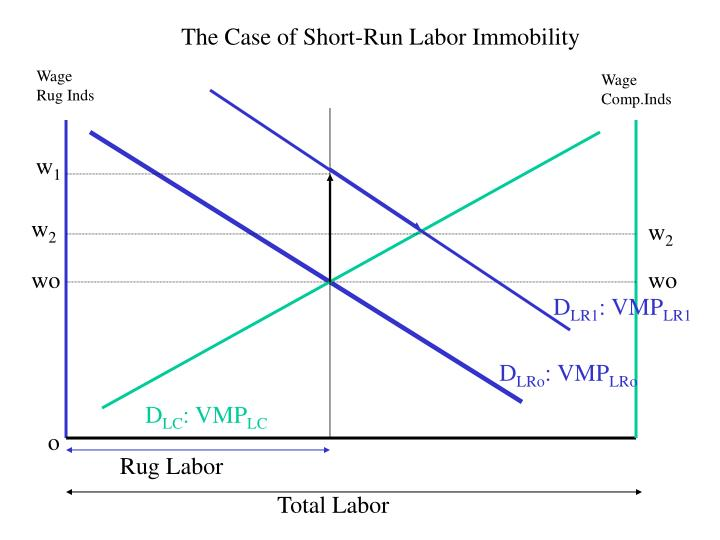 The Case of Short-Run Labor Immobility