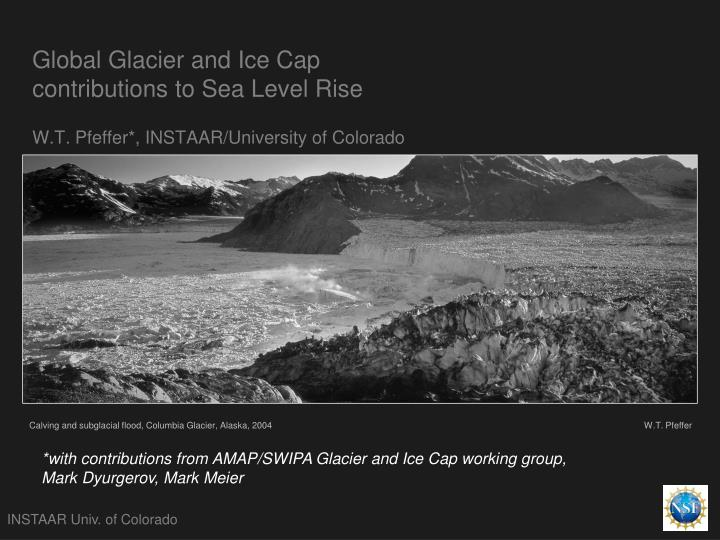 Global Glacier and Ice Cap contributions to Sea Level Rise
