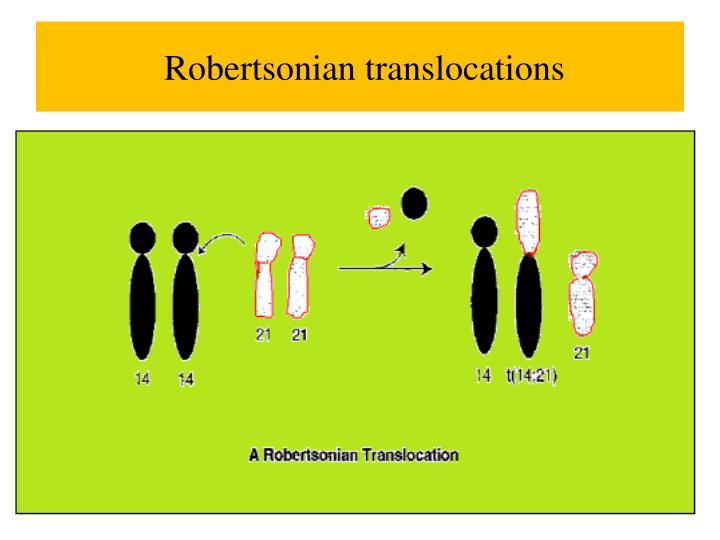 PPT - Chromosomal Abnormalities II SDK October 28, 2013 ...