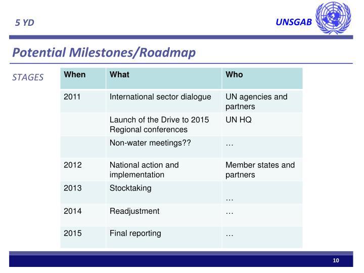 Potential Milestones/Roadmap