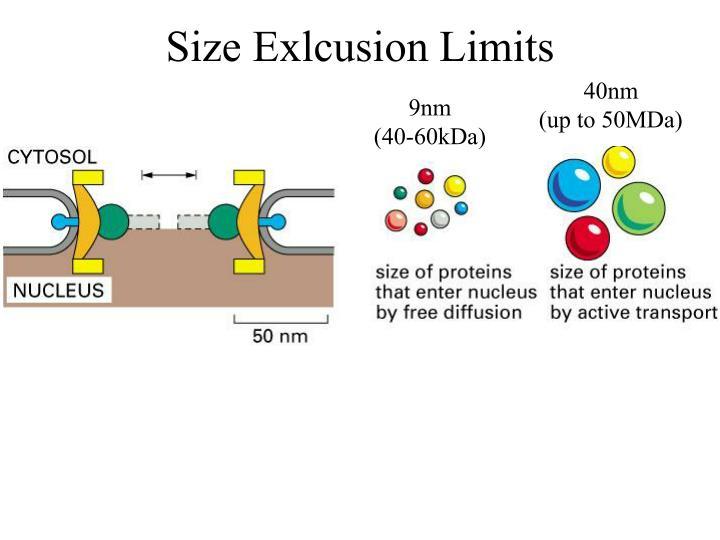 Size Exlcusion Limits