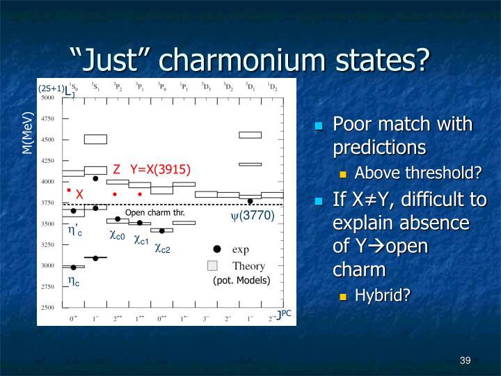 """""""Just"""" charmonium states?"""