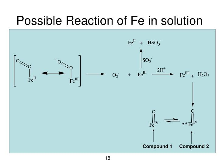 Possible Reaction of Fe in solution