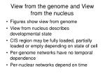 view from the genome and view from the nucleus