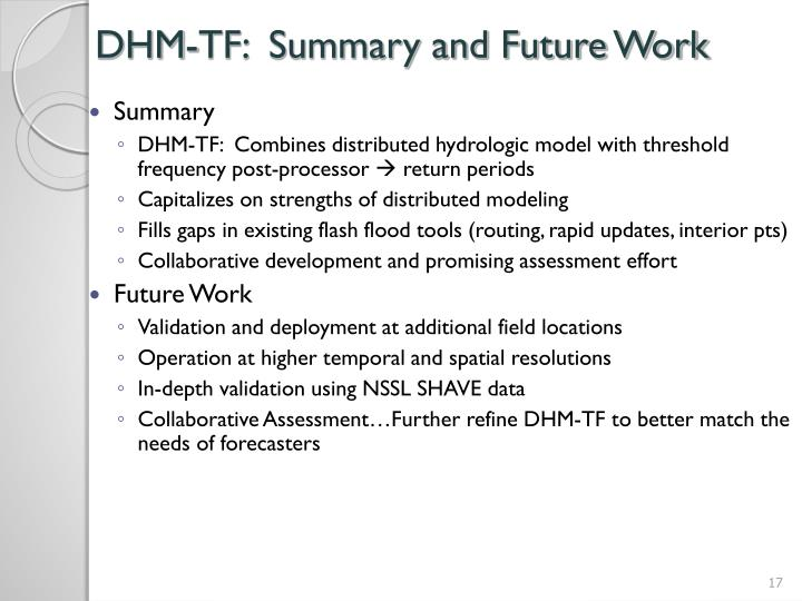 DHM-TF:  Summary and Future Work