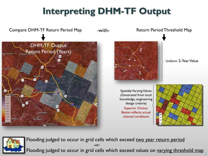 Interpreting DHM-TF Output