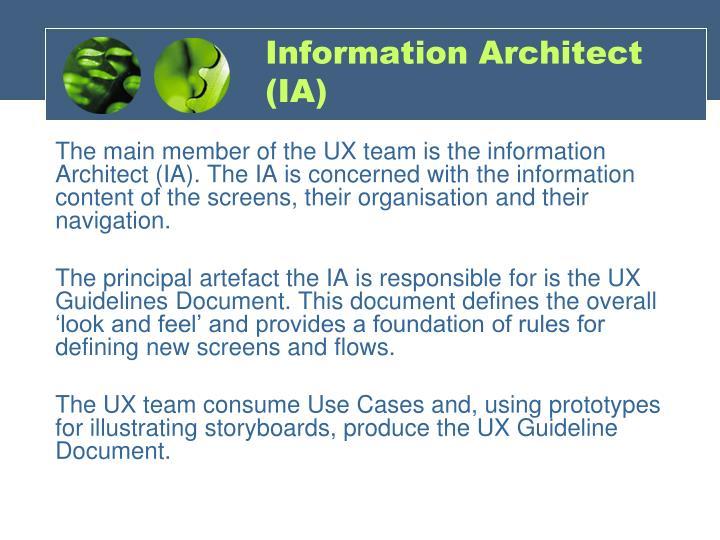 Information Architect (IA)