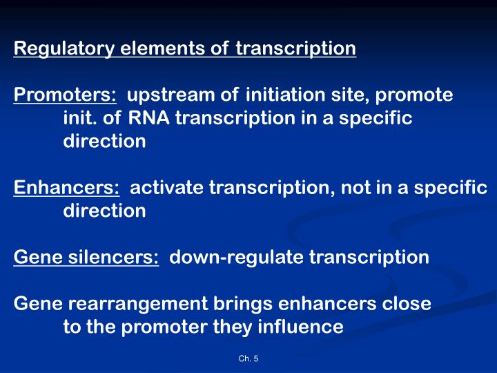 Regulatory elements of transcription
