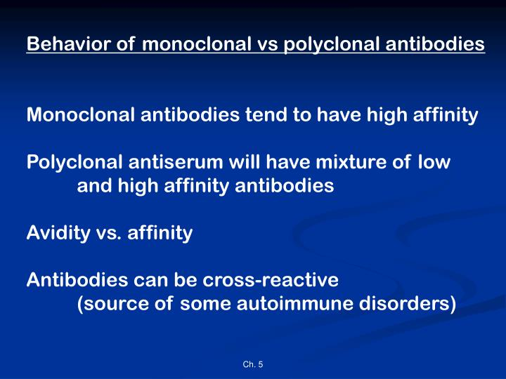 Behavior of monoclonal vs polyclonal antibodies