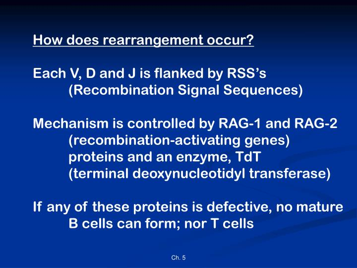 How does rearrangement occur?