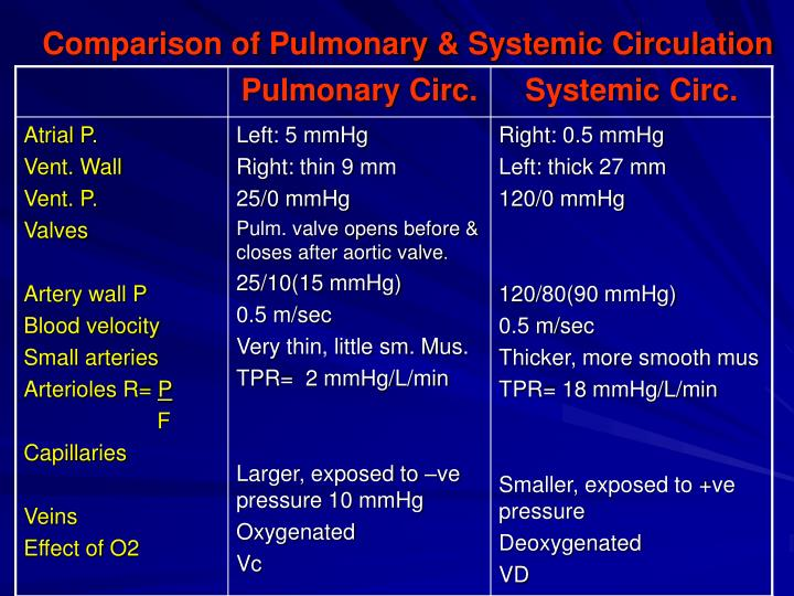 Comparison of Pulmonary & Systemic Circulation