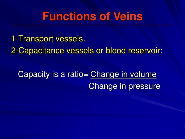 Functions of Veins