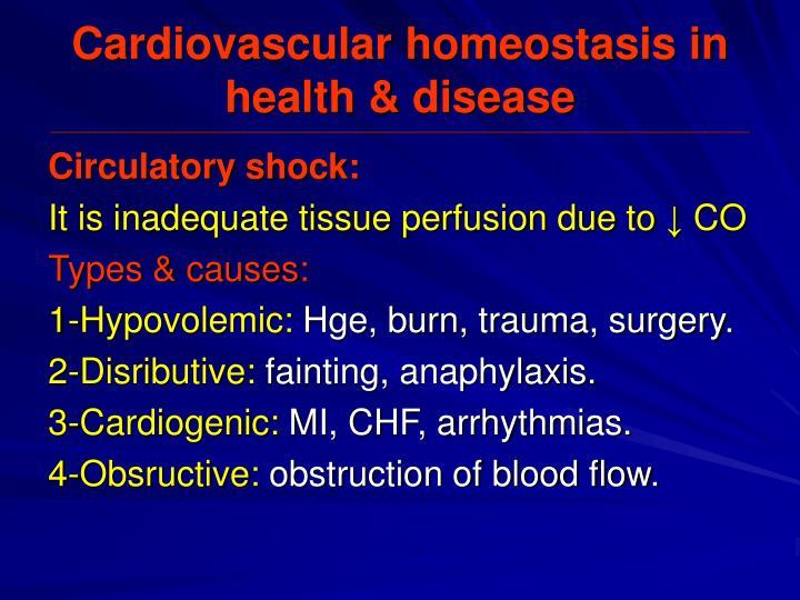Cardiovascular homeostasis in health & disease