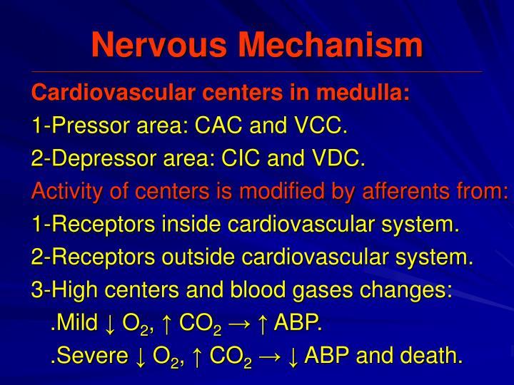 Nervous Mechanism