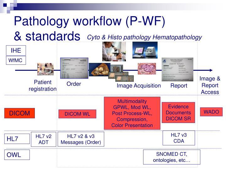 Pathology workflow (P-WF)
