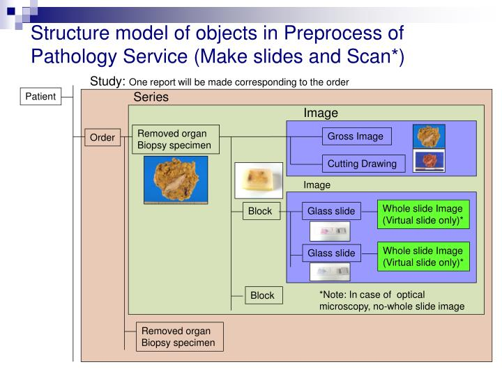 Structure model of objects in Preprocess of Pathology Service (Make slides and Scan*)