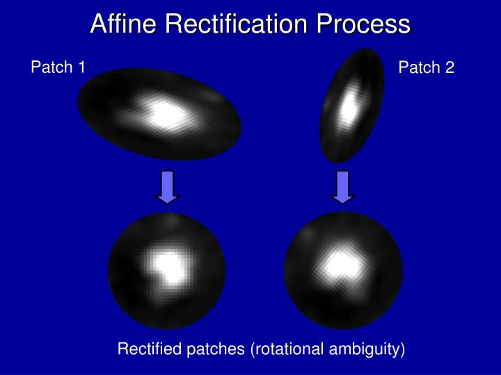 Affine Rectification Process