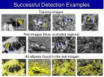 successful detection examples