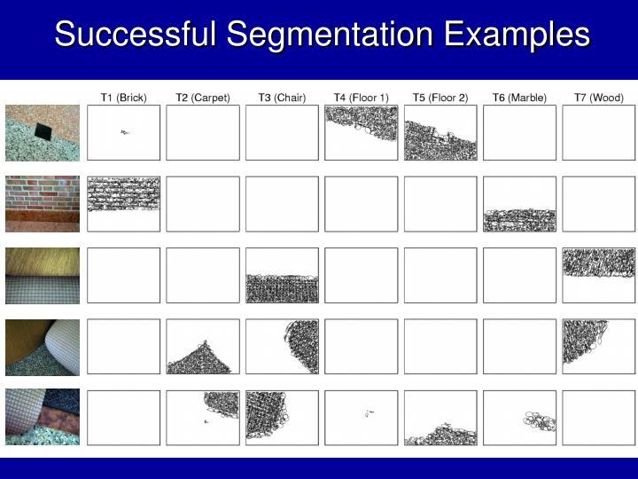 Successful Segmentation Examples