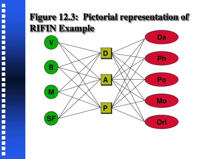 Figure 12.3:  Pictorial representation of RIFIN Example