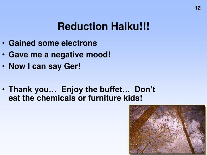 Reduction Haiku!!!