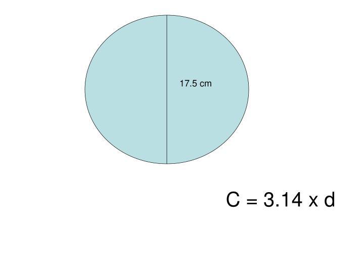 17.5 cm