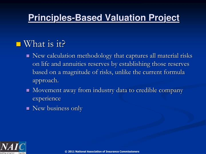 Principles-Based Valuation Project