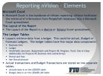reporting nvision elements