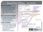 reporting nvision variables