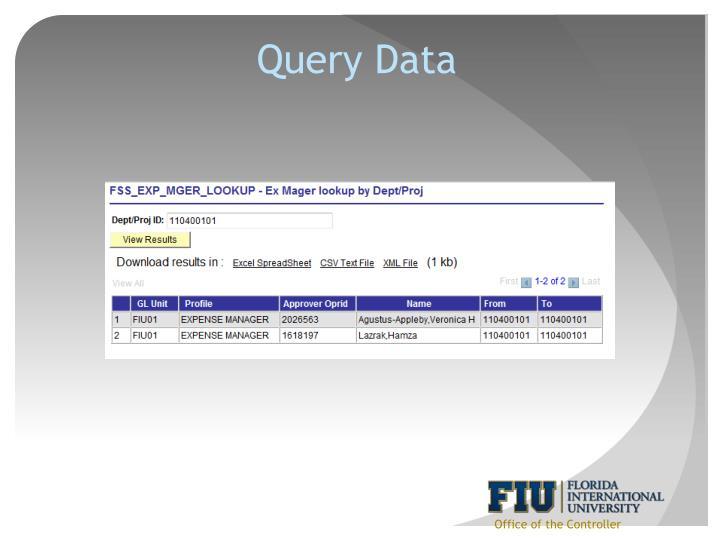 Query Data