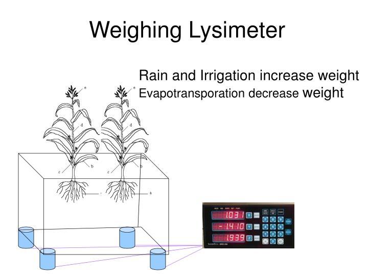 Weighing Lysimeter