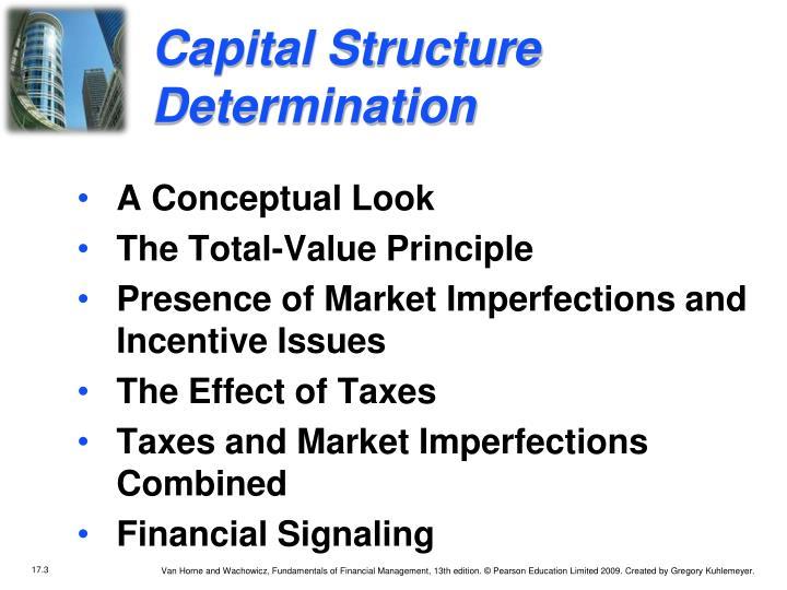 Capital Structure Determination