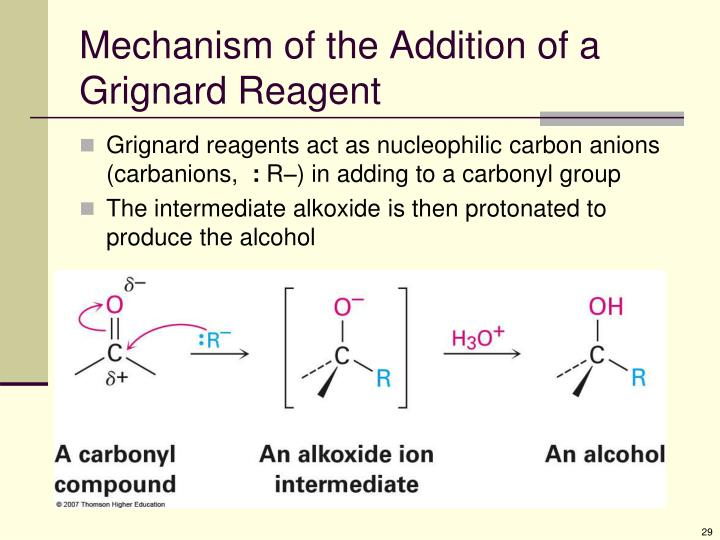 Mechanism of the Addition of a Grignard Reagent