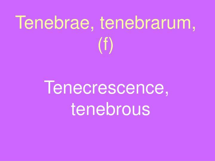 Tenebrae, tenebrarum, (f)