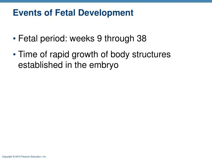 Events of Fetal Development