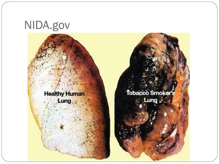 NIDA.gov
