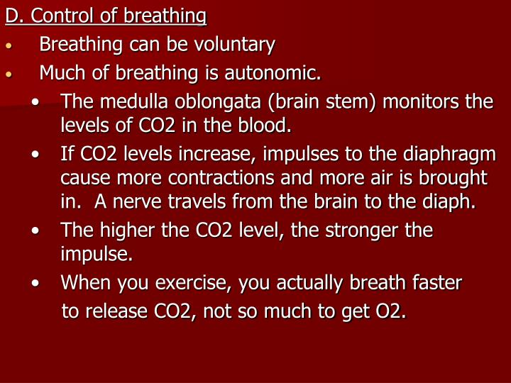 D. Control of breathing
