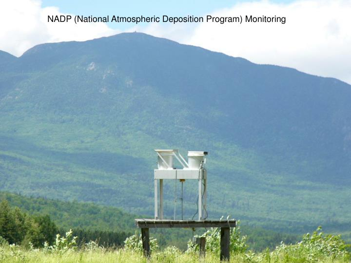 NADP (National Atmospheric Deposition Program) Monitoring