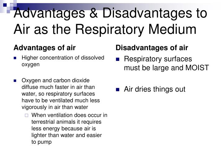 Advantages & Disadvantages to Air as the Respiratory Medium