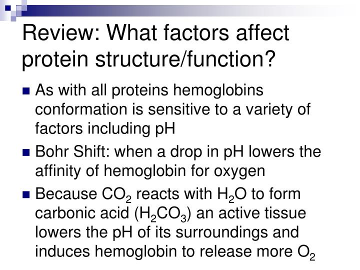 Review: What factors affect protein structure/function?