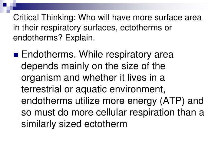 Critical Thinking: Who will have more surface area in their respiratory surfaces, ectotherms or endotherms? Explain.