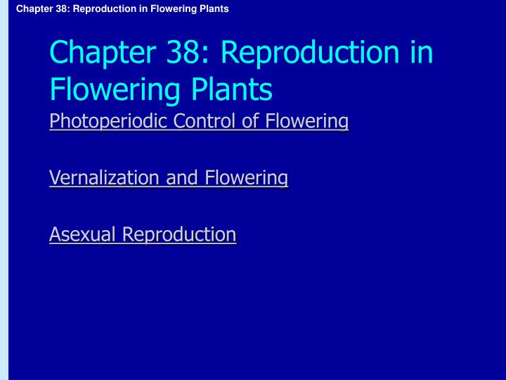 Chapter 38 reproduction in flowering plants1