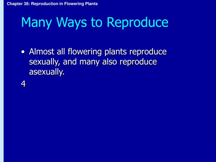 Many Ways to Reproduce