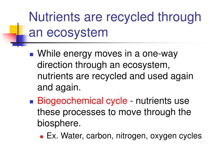 Nutrients are recycled through an ecosystem
