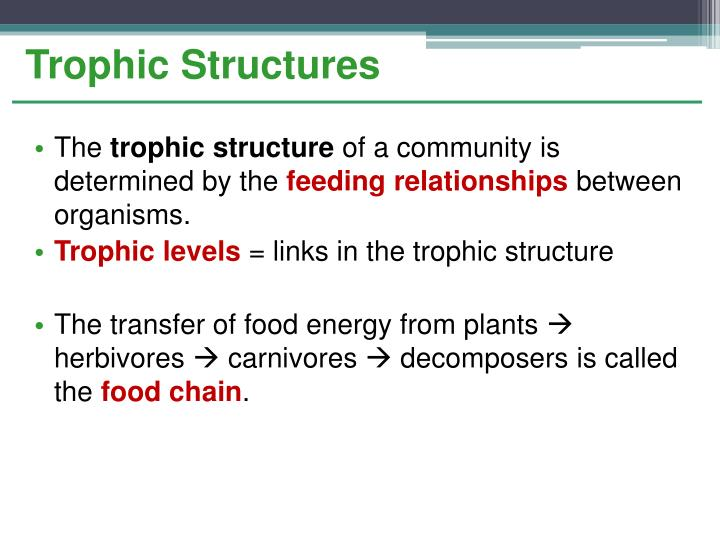 Trophic Structures