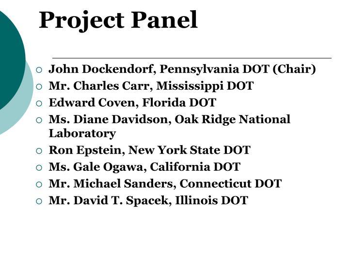 Project Panel